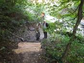 Treppe Schalberg 2017_2